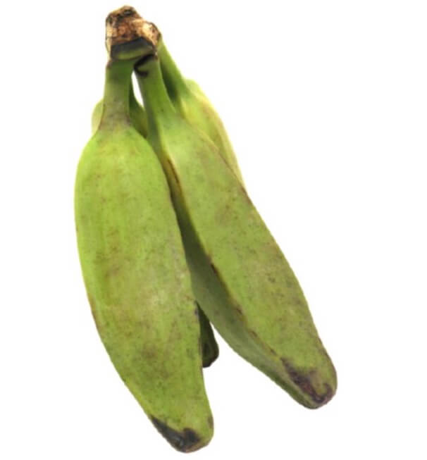 Green Burro Banana ( 2 Count - approx.)