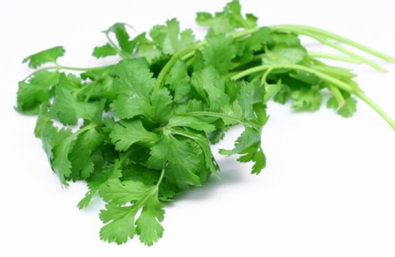 Cilantro Leaves - 1 count