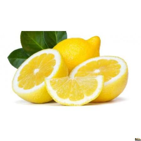 Lemon (4 count)