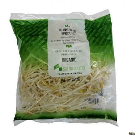 Organic Bean Sprout - 6 oz