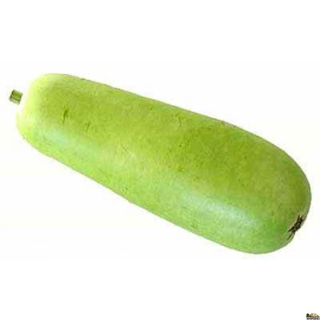 Bottle Gourd/opo  - 1 Count