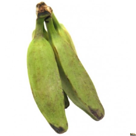 Green Burro Banana ( 2 Count - approx. 1 lb)