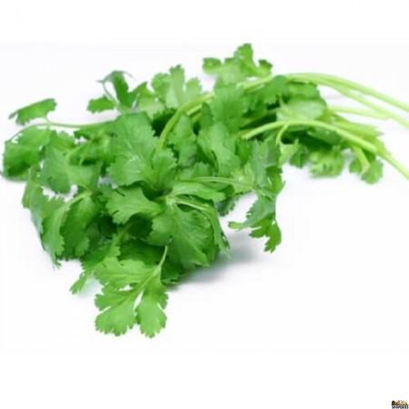 Organic Cilantro Leaves - 1 Count