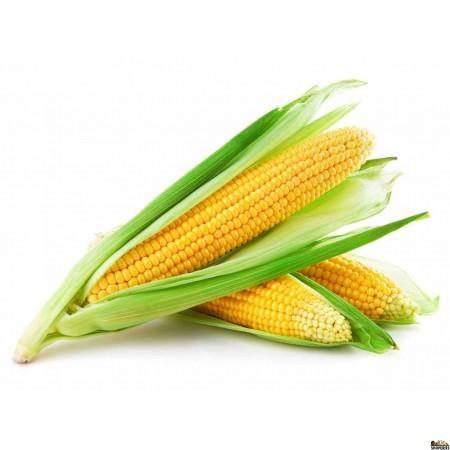 Yellow Corn - 2 count