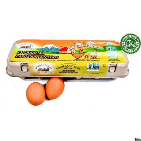 Go-Organic Grade AA Large Free Range brown Eggs - 12 Count