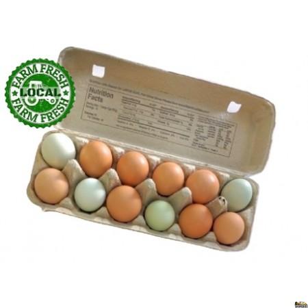 Free Range Pasture Raised Eggs - 12 Count