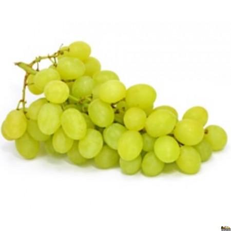 Green seedless Grapes - 1.5 lb