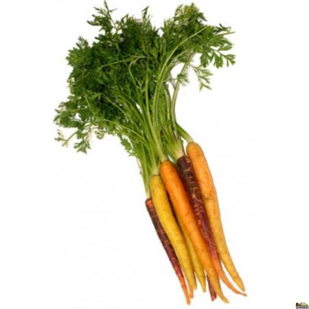 Organic Rainbow Carrots - 1  bunch