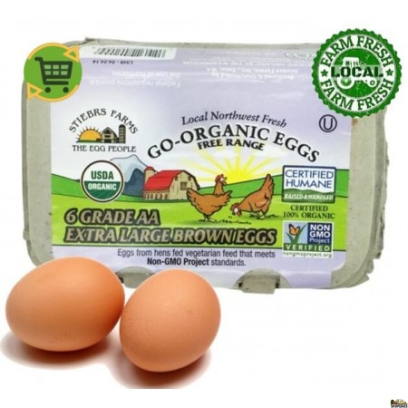 Go Organic Grade AA Large Free Range brown Eggs - 6 Count
