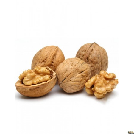 Fresh Walnuts in Shell - 1 lb