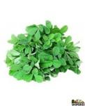 Fenu Greek/Methi Leaves ( 1 big bunch)
