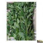 Bathua / Chakvat/ Chakkavatta/ Parippuchira/ Pappukura/ Chakravarthi Spinach - 0.5 Lb