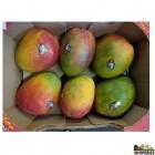 Sweet Kent Mangoes - 1 Case