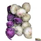 Purple Kohlrabi - 1 Count