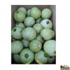 Organically Grown Summer Squash Green - 2 lb