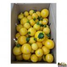 Organically Grown Summer Squash Yellow - 2 lb