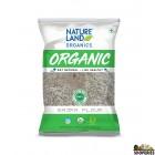 Nature Land ORGANIC Bajra Flour(Pearl Millet) - 2 lb