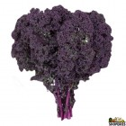 Organically Grown Curly Red Kale - 1 Bunch