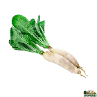 Daikon With Leaves - 1 Lb