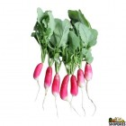 Organically Grown French Baby Daikon With Leaves - 1 Lb