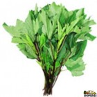 Gongura Leaves - 0.5 lb