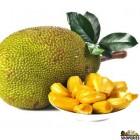 Jackfruit - 5 lb (approx.)