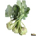 Organically Grown Kohlrabi With Leaves - 1 Bunch ~ 1.6 Lb Approx