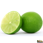 Lime (4 count)