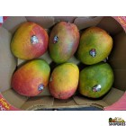 Sweet Large Kent Mangoes - 1 Case (8 count)