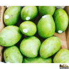 Sweet Mallika /Neelum /Dasheri Mangoes - 1 Case