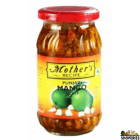 Mothers Punjabi mango pickle 500g