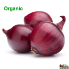 Organic Red Medium Onion - 3 lb