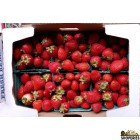 Organically Grown Strawberries - 1 Pint
