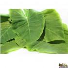 Taro Leaves - 0.5 Lb