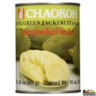 Young Green Jackfruit in Can - 20 oz