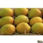 Alphonso Mangoes 1 Large Box (Pre-Order)