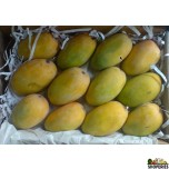 Kesar Mangoes - 1 Large Box
