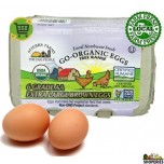 Go-Organic Grade AA Xtra Large Free Range brown Eggs - 6 Count