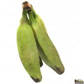 Green Burro Banana ( 2 Count )