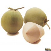 Young Coconut (9 count)