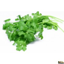 Cilantro Leaves - 2 count