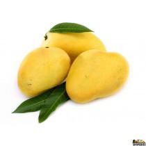 Golden Champagne Mango 1 case (14 Count)