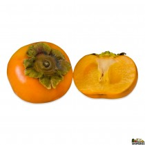 Fuyu Persimmon -1 count