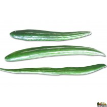 Snake Gourd/Pudalankai - 1 lb