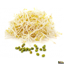 Sprouted Moong Beans - 12 Oz