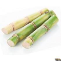 Sugarcane - 1 piece (15 in.)
