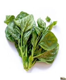 Pul Saag / Mong Toi / Malabar Spinach - 0.5 lb