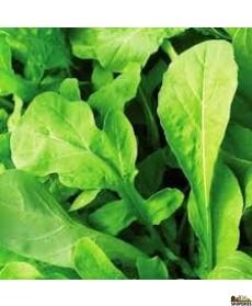 Arugula Spinach -  5 Oz