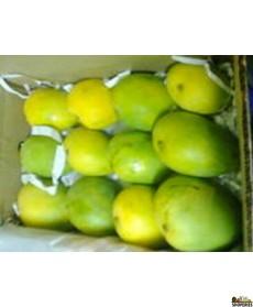 Banganapalle Mangoes - 1 Large Box (Pre-order)