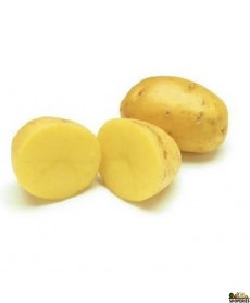Organic Golden Yukon Potato - 3 lb